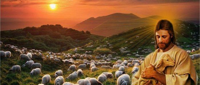 Հովիվը
