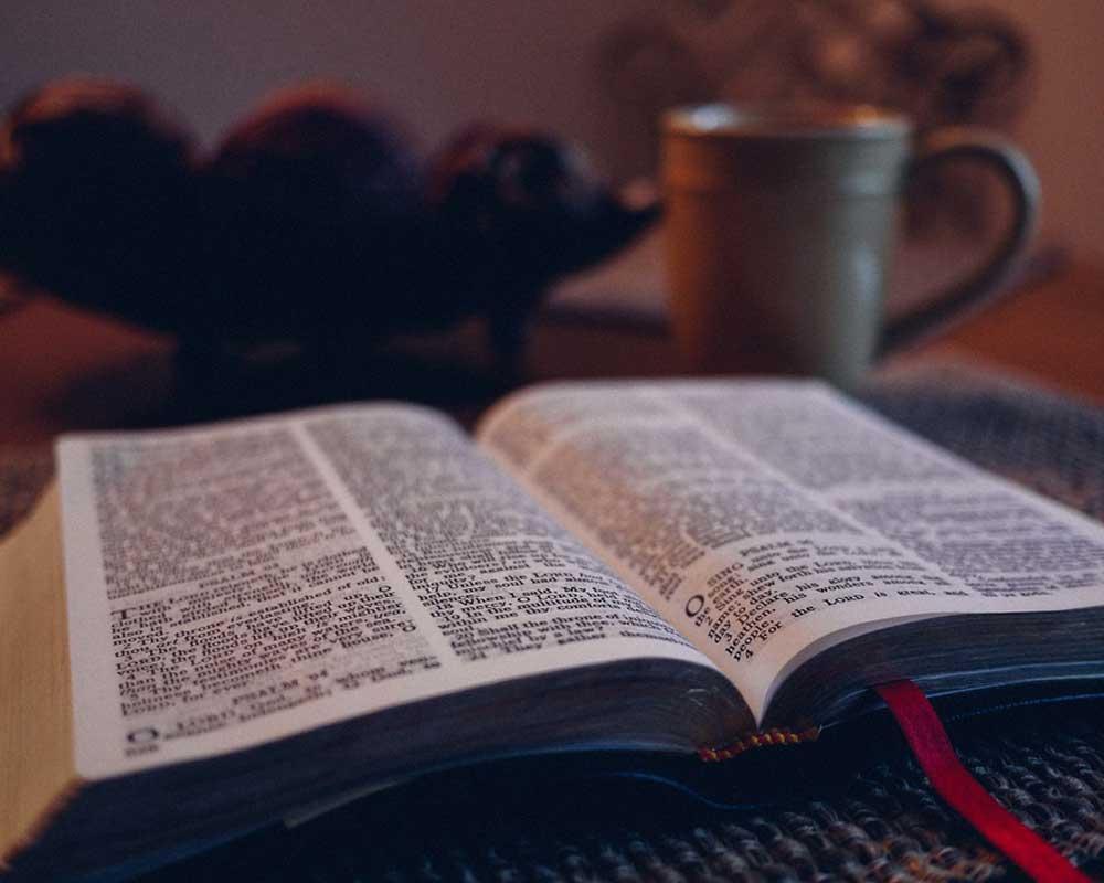 Հռովմայեցիս 14:15